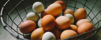 News: Eggs Declared Safe For Elderly 30 Years After Salmonella Scare