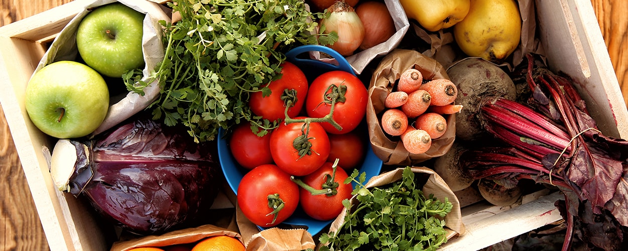 Healthy Nutrition for Older People