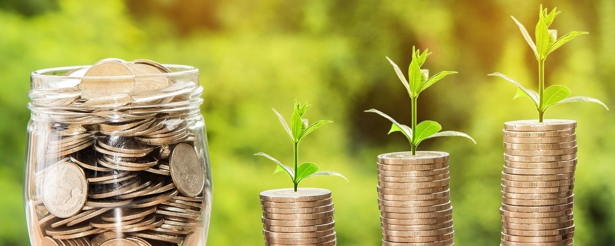 Investing Money Guide